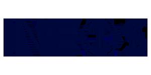 ineos logo kleur